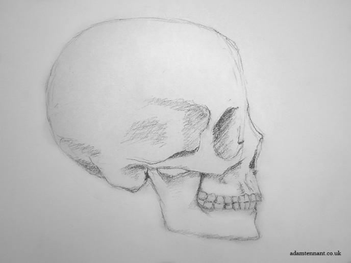 Pencil Life Drawing 05